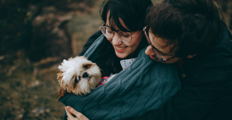 3 Most Popular Uses of Pet-Related Apps